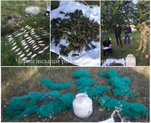 Викрито браконьєрів, які завдали збитків рибному господарству у розмірі понад 10 тис.грн