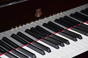 Чернігівська музична школа №1 отримала унікальний рояль