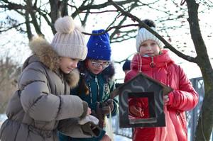 Нагодуй птахів взимку